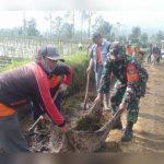 Menjelang Bulan Suci Ramadhan Anggota Koramil 1116/Cikajang Laksanakan Kerja Bakti Serentak Dengan Slogan Bersihkan Hati dan Lingkungan